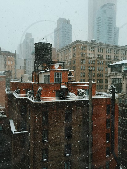 Snow in NYC photo