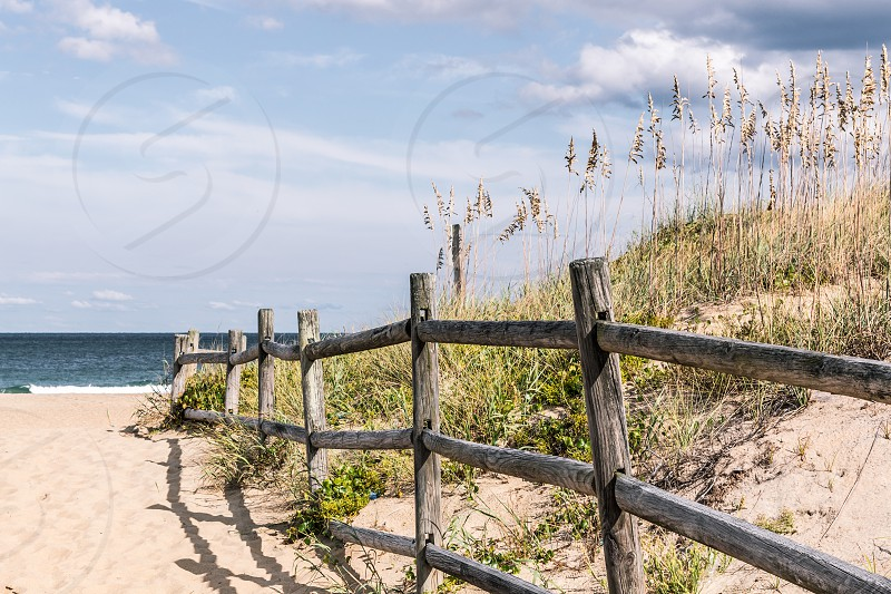 outdoor coastal coast shore natural green seaside travel dune sand sunny grass summer fence sun wood beach blue railing seascape sky scenic virginia tourism seashore sea wooden beautiful path water nature coastline vacation atlantic walkway landscape ocean beach sand fence post sandy beach beach grass landscape beach grass and sand blue sky sand dunes beach sand dunes cloudy sky virginia beach sandbridge photo