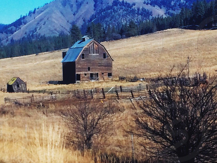 brown and black wooden house on brown grass field photo