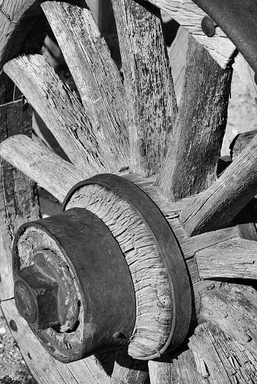 Wagon wheel  photo