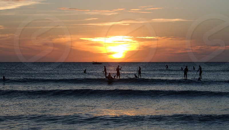 stand up paddle surfers at sunset on the beach photo