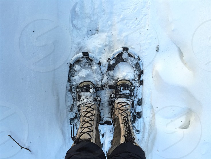 We travel to Berkshires MA US for holidays. Snowshoes are fun! photo