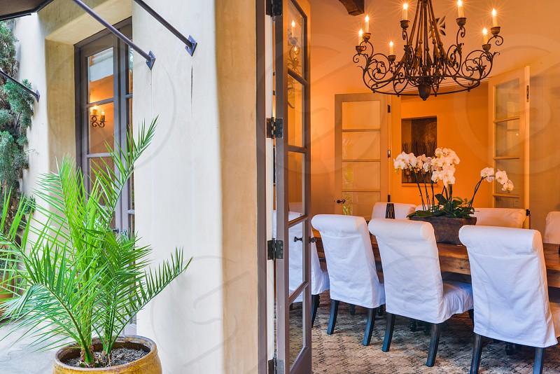houseplant indoor plant home interior exterior design photo