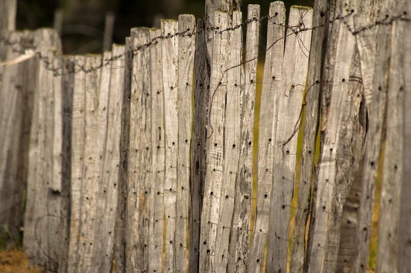 A rustic fence in a field near Villa Cerro Castillo in Chilean Patagonia. photo