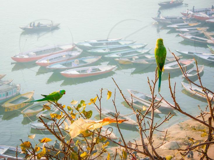 Ganges river photo