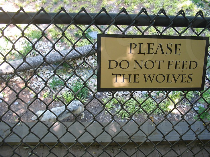 Wolf sign and fence at Busch Gardens photo