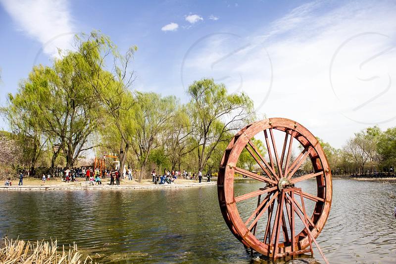 brown wheel on water near brown grass photo