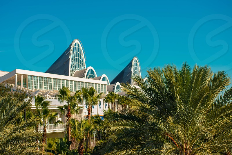Orlando Florida. January 12 2019 Top view of Orlando Convention Center and palms trees at International Drive area. photo
