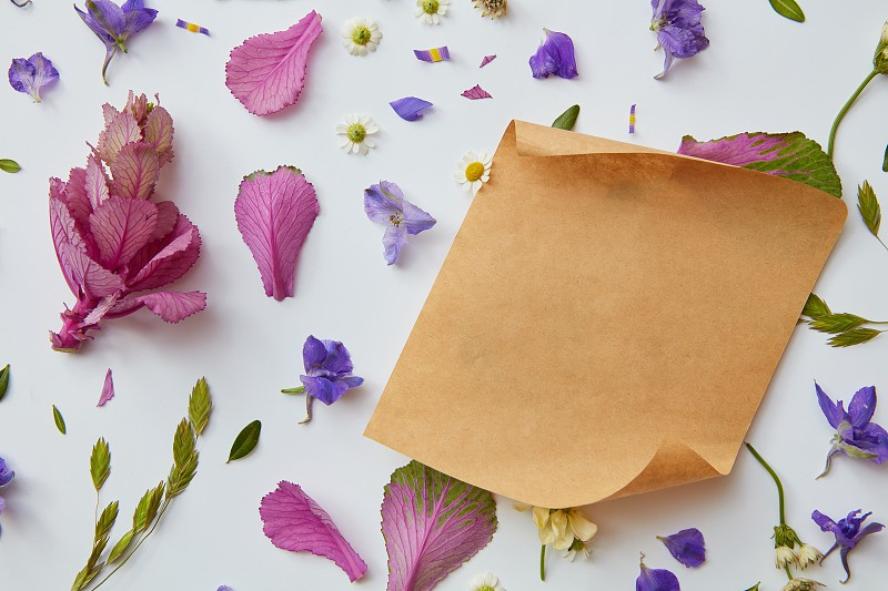 buds colorful flowers on a white background with a piece of kraft paper for text flat lay photo