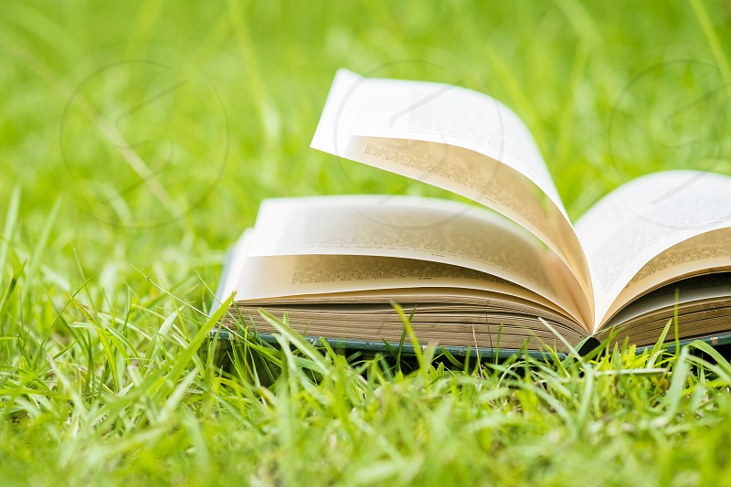Closeup of an old open book with fanned pages laying on green grass. Shallow depth of field. photo