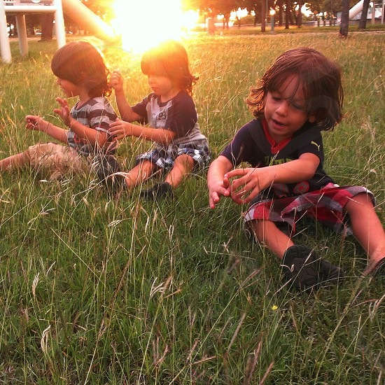 Playing in the grass photo