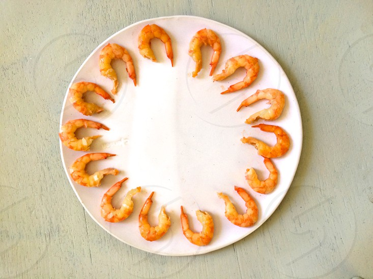 circle of shrimps on a white plate photo