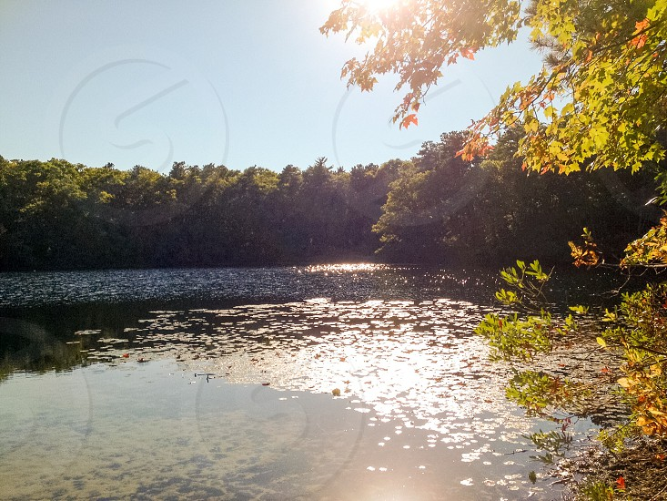 Transitioning to autumn   photo
