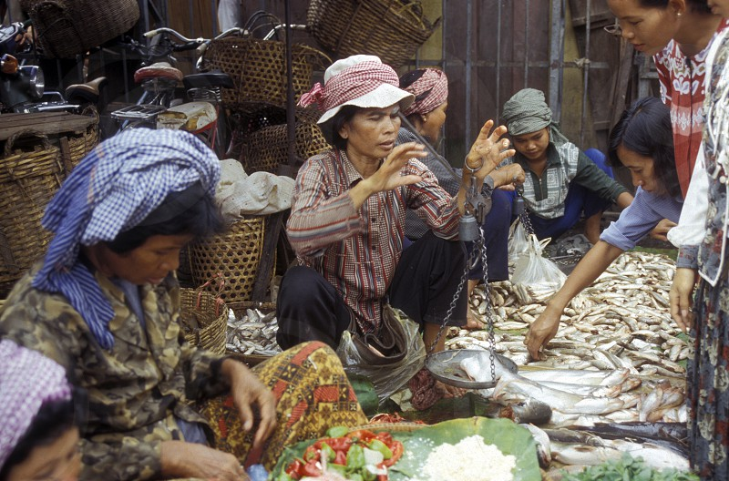 the market in the city of phnom penh in cambodia in southeastasia.  photo