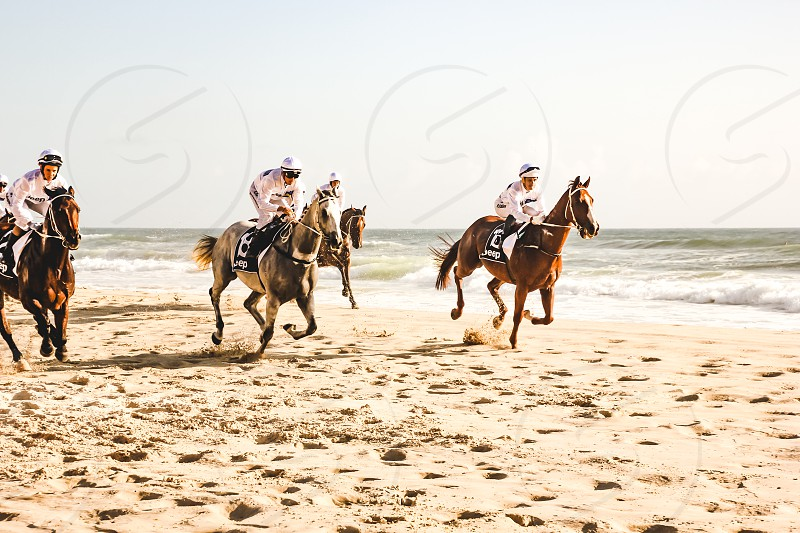 jockeys on horseback racing along the beach at Surfers Paradise in Queensland Australia photo
