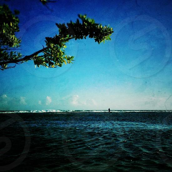 Lone fisherman photo