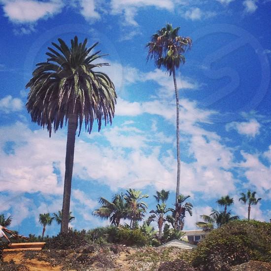San Diego California USA photo