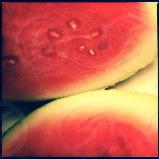 Watermelon - close up photo