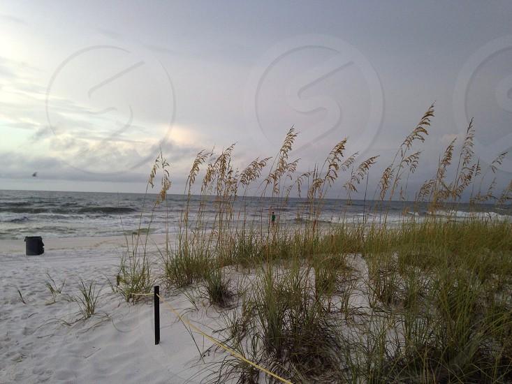 sea side view photo