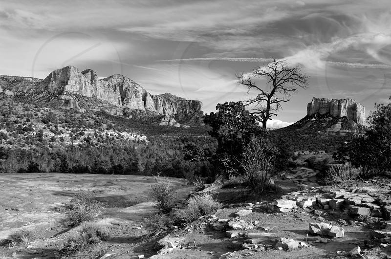 Sedona Nature - Arizona photo
