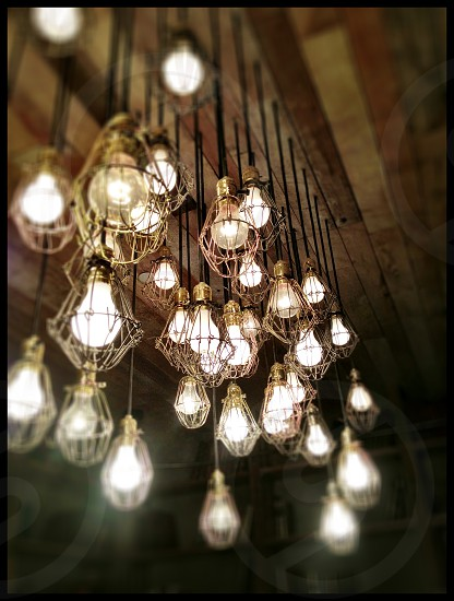 Multiple bare lightbulbs photo
