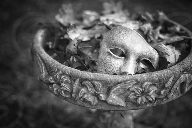 Fountain mask leaves monochrome nature water  photo