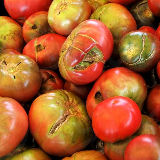 Organic heirloom tomatoes photo