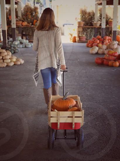 Pumpkin Shopping  photo