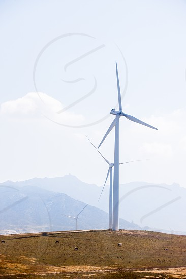 A wind farm in operation in Southern Spain. photo