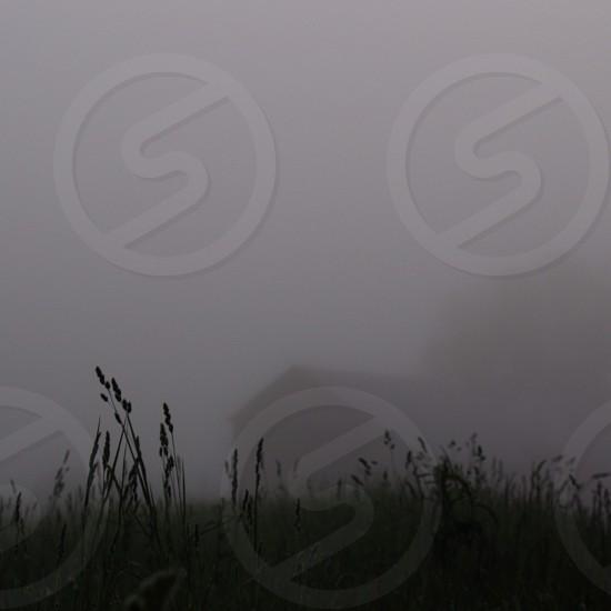 Foggy Morning North Hadley Massachusetts photo
