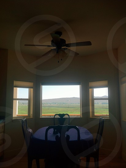brown and white 5 bladed ceiling fan photo
