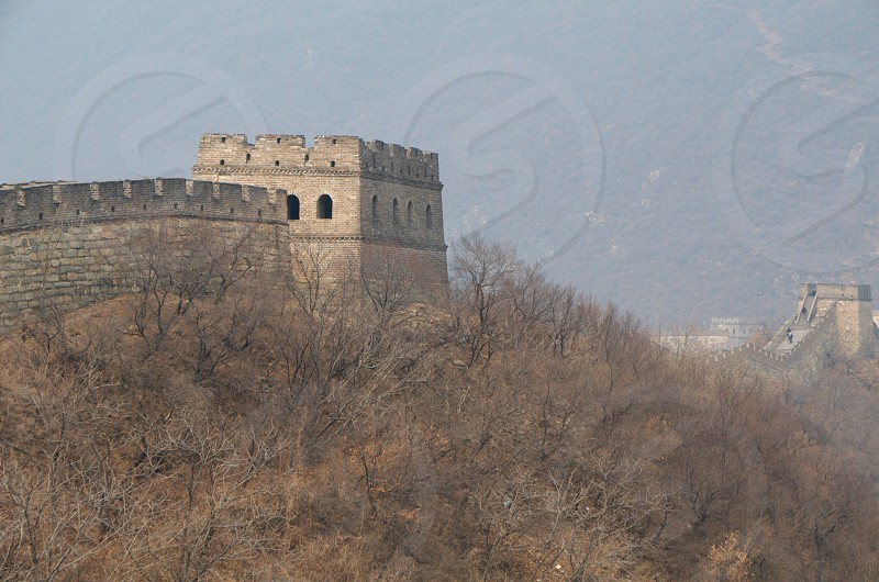 the great wall of china by brown bare trees photo
