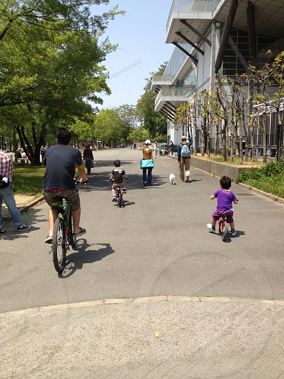Park bike  photo