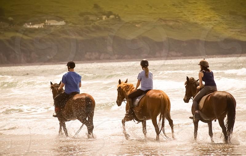 3 person riding on horse near shoreline photograph photo