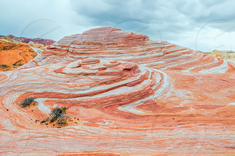 View of the Fire wave in Valley of Fire State Park. Nevada. USA photo