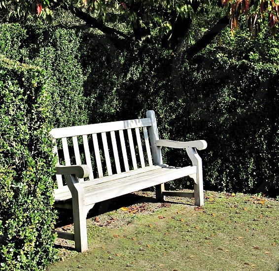 rustik bench photo