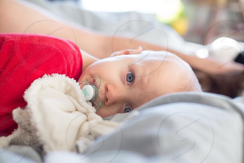 Toddler kid boy cuddling  photo