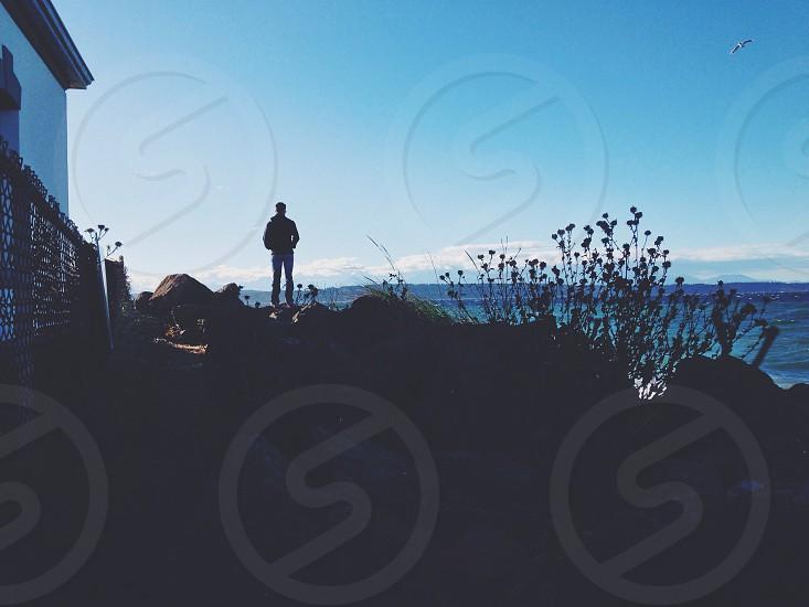 Discovery Park - Seattle WA. photo