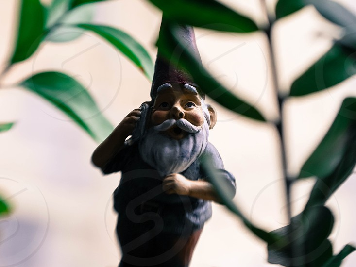Gnome plants small figure on the phone top house plant photo