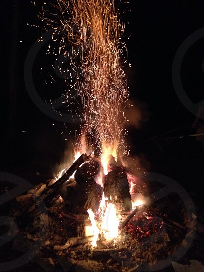 Social bonfire photo