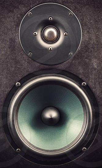 Details of a black speaker view on tweeter and woofer.  photo