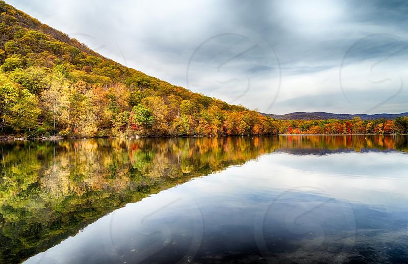 Autumn Blaze photo