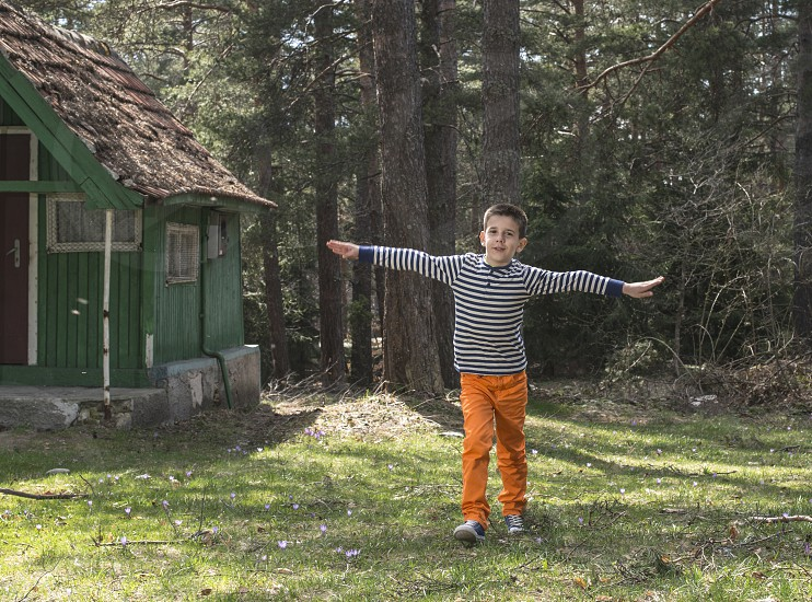 Child play in the forest.  photo