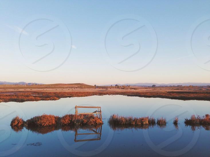 open field photo