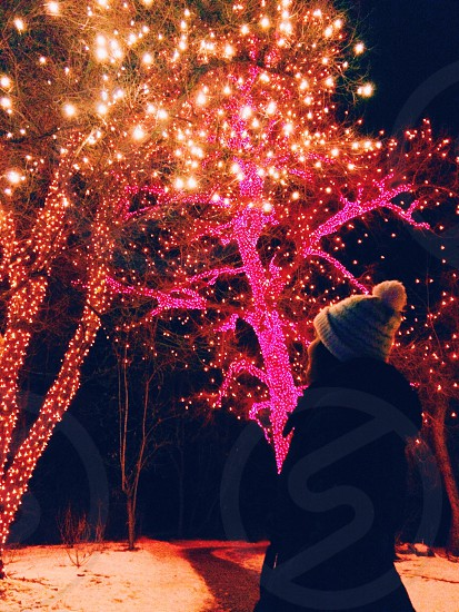 traveling in city watching christmas lights  photo