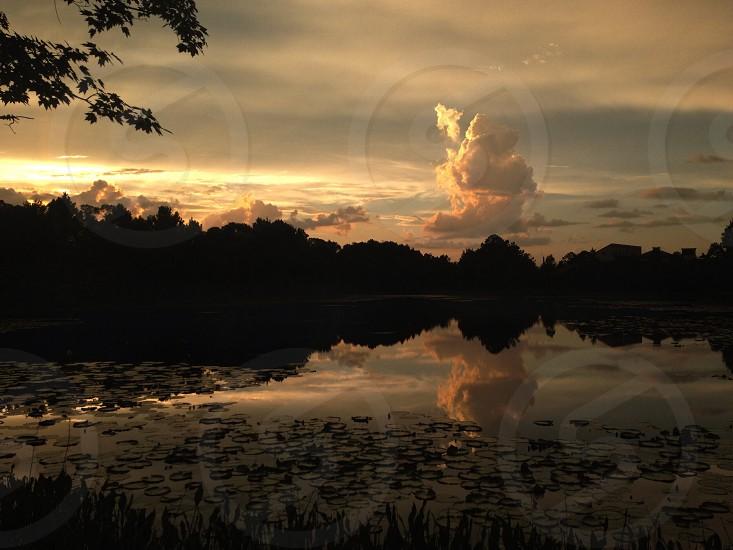 Sunset Palm Coast FL photo