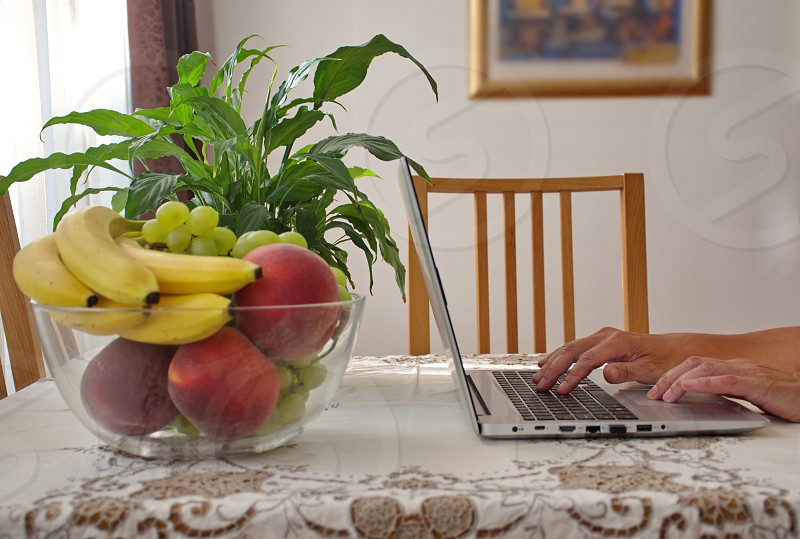 Midsection of woman using laptop sitting by the table with fruits and potted plant on it photo