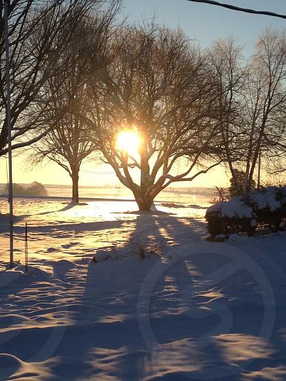 Beautiful sunrise morning Midwest IL. Ogle county photo