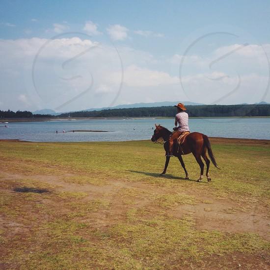 Horse ride boy riding his horse lake summer love photo