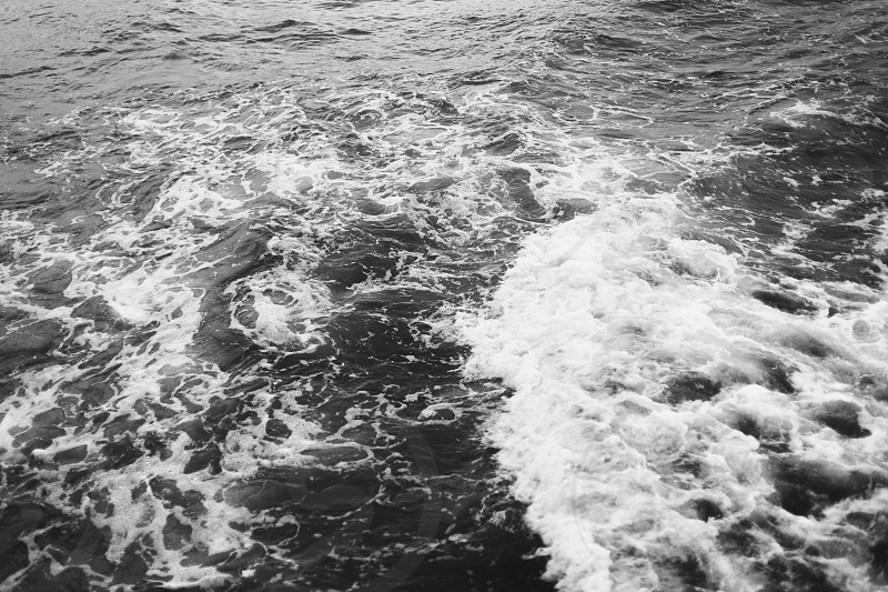 Black and white ocean waves photo